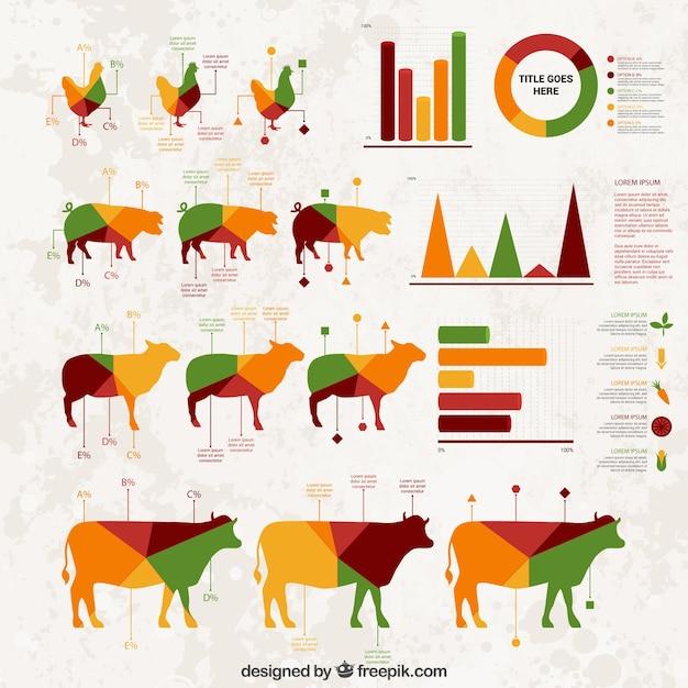 Infografía agricultura vector gratuito