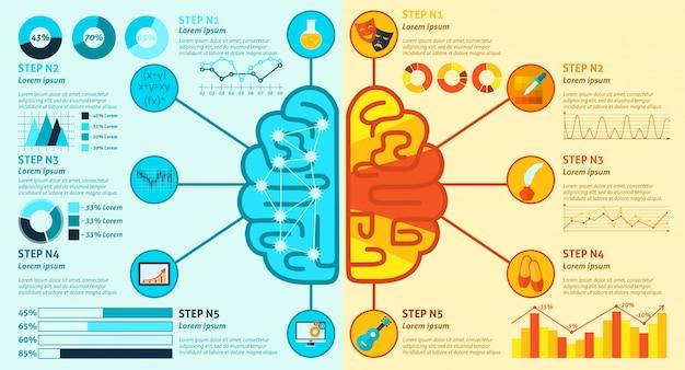 Infografía del cerebro izquierdo y derecho vector gratuito