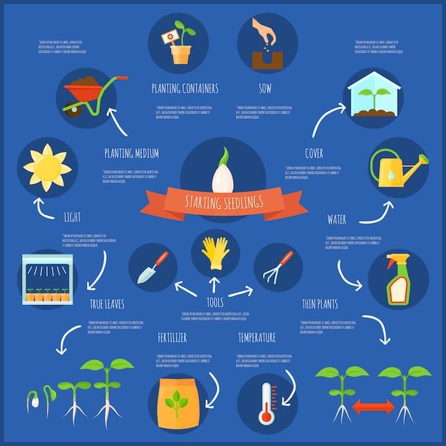 Infografía de plántulas con símbolos de riego y temperatura, ilustración vectorial plana vector gratuito