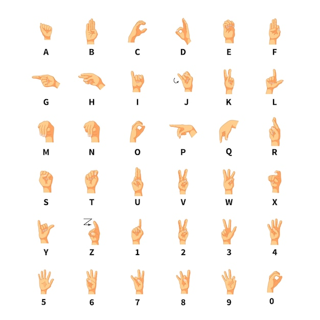 Intérprete de lenguaje de señas, signos del alfabeto latino en blanco    Vector Premium