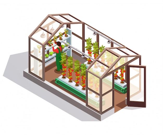 Invernadero isométrico con paredes de vidrio vector gratuito