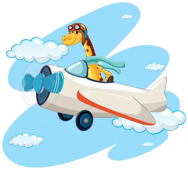 Jirafa montando aeroplano vintage Vector Premium