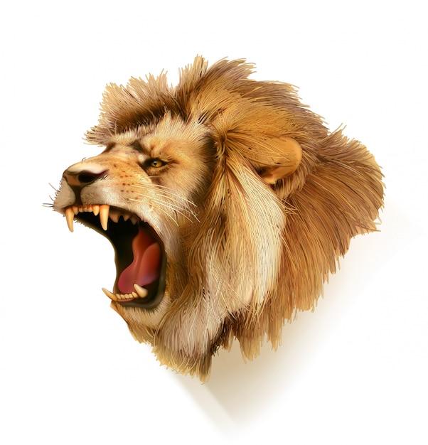 León rugiente, ilustración de cabeza Vector Premium
