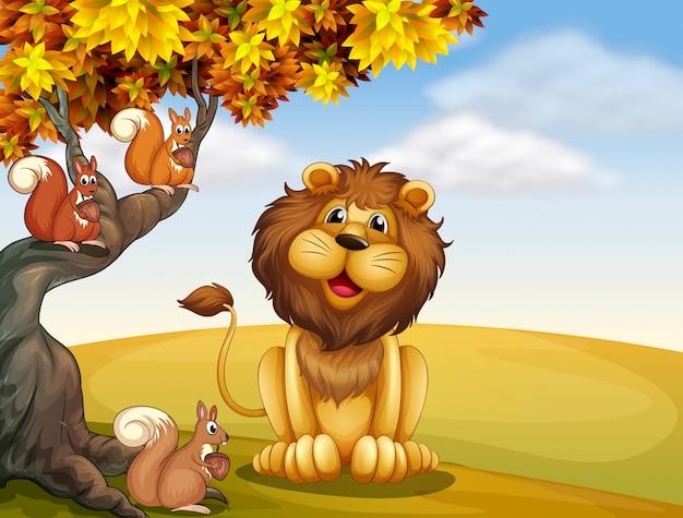 Un león con tres ardillas en la cima de la colina. vector gratuito