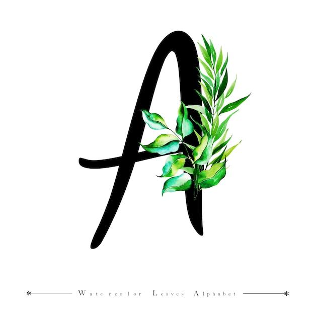 Letra del alfabeto a con fondo de hojas de acuarela | Descargar ...