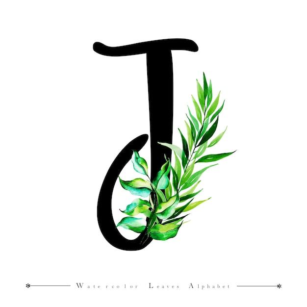 Letra del alfabeto j con fondo de hojas de acuarela   Descargar ...
