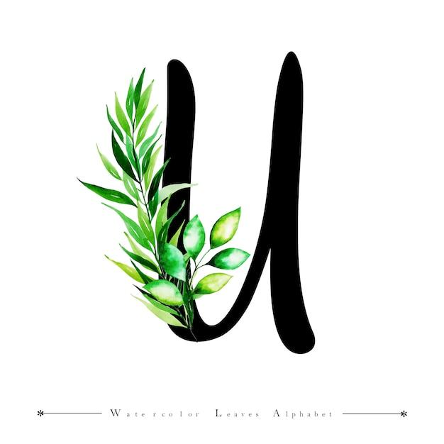 Letra del alfabeto u con fondo de hojas de acuarela | Descargar ...