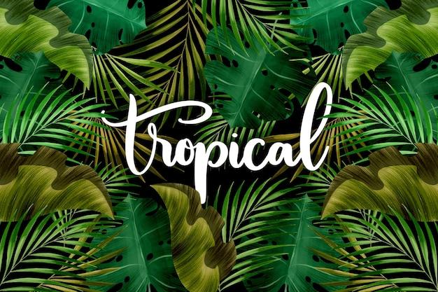 Letras de palabras tropicales y hojas vector gratuito