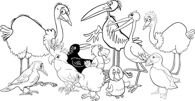 Libro para colorear de aves | Descargar Vectores Premium