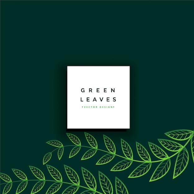 Limpie el fondo mínimo de hojas verdes vector gratuito