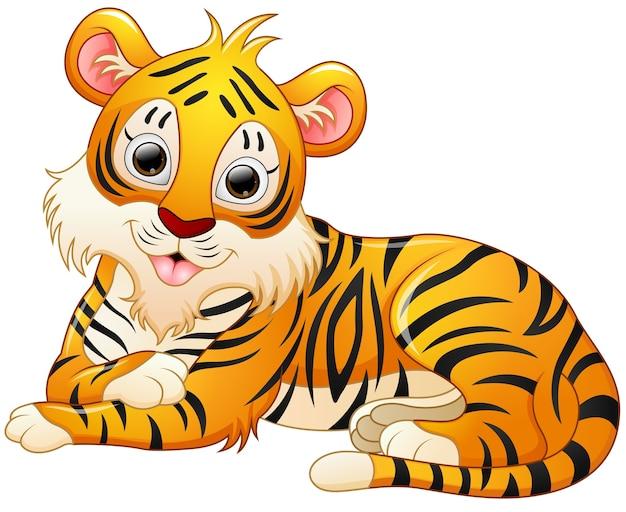 Linda Caricatura De Tigre Se Establecen