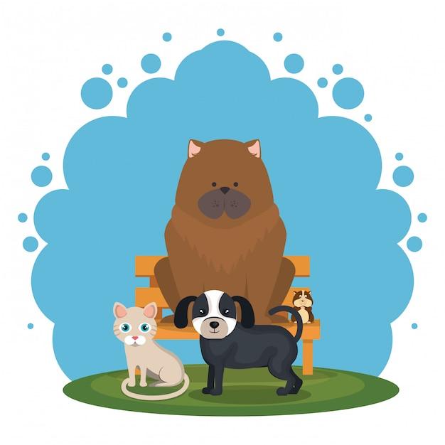 Lindas mascotas e iconos de la tienda de mascotas vector gratuito