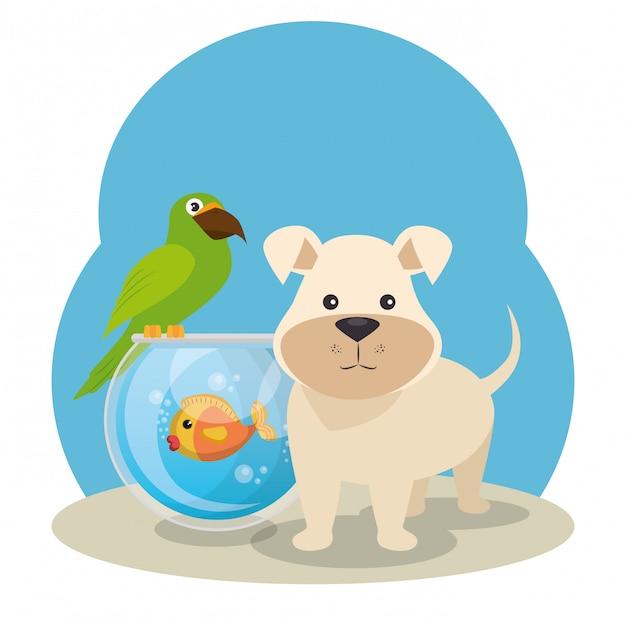Lindas mascotas de la tienda de mascotas vector gratuito