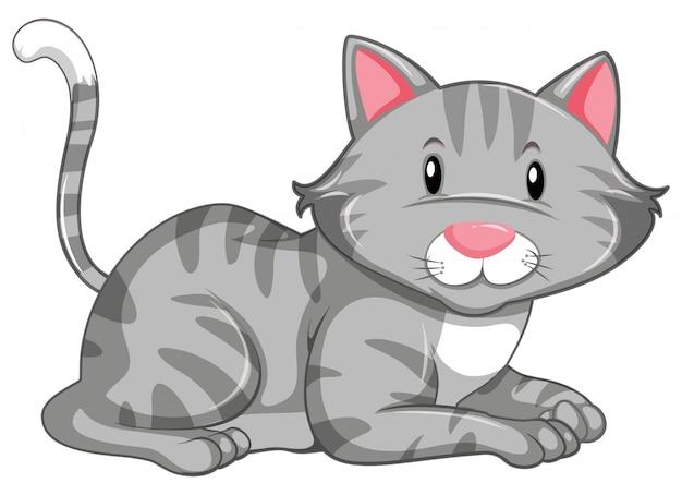 Lindo gatito en blanco vector gratuito