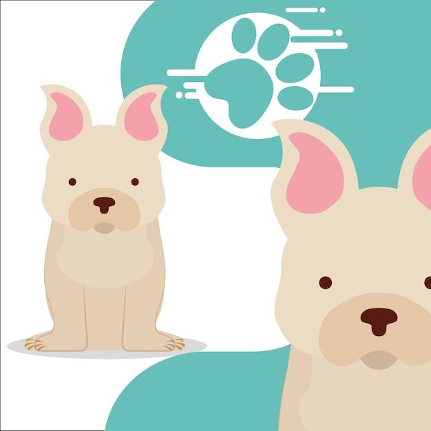 Lindo par de perros sentados y la impresión de la pata | Descargar ...