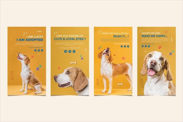 Lindo perro adopta una mascota instagram stories vector gratuito