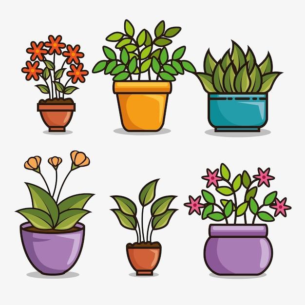 Lindos dibujos animados de plantas hermosas de la casa for 5 nombres de plantas ornamentales