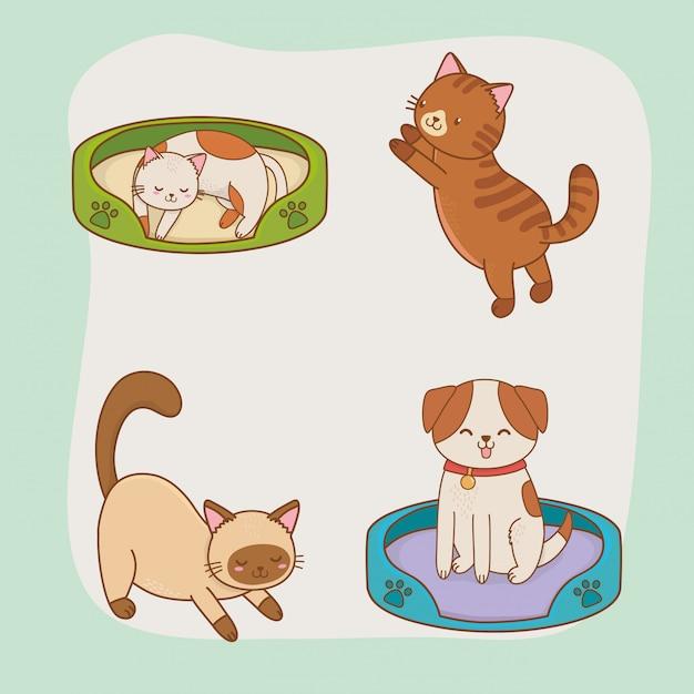 Lindos perritos y mascotas de gatitos. Vector Premium