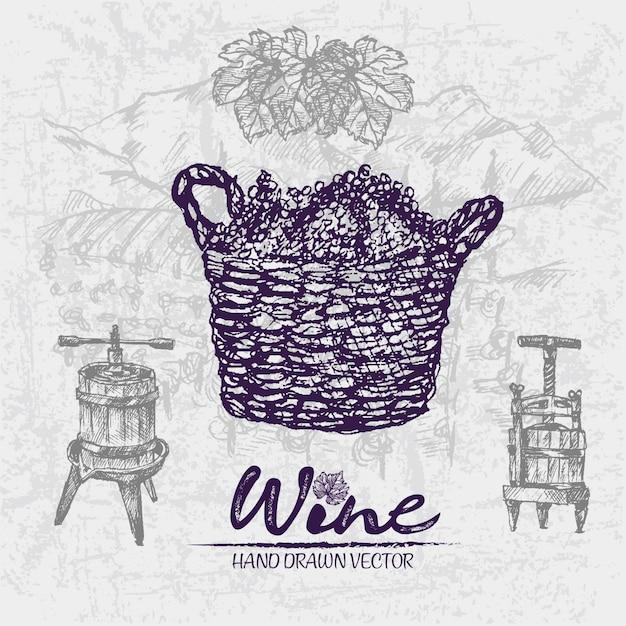 Línea detallada arte dibujado a mano ilustración de cesta de uva ...