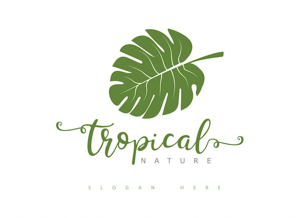 Logotipo de hoja tropical Vector Premium
