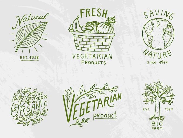 Logotipos de alimentos orgánicos saludables conjunto o etiquetas y elementos para vegetarianos y productos de verduras naturales de granja, ilustración. insignias de vida saludable. grabado dibujado a mano en boceto antiguo. Vector Premium