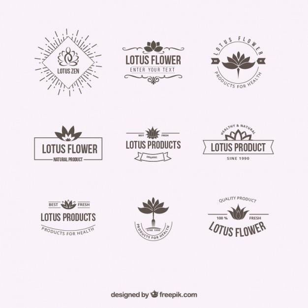Logotipos flor de loto Vector Premium