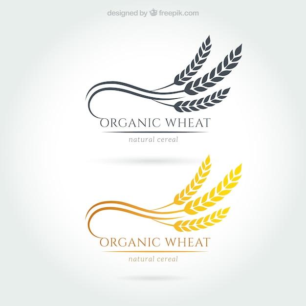 Logotipos orgánicos trigo Vector Premium