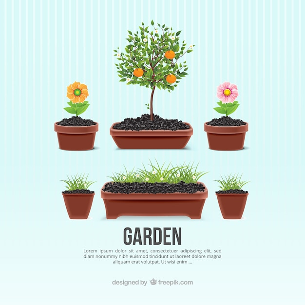 Macetas de jard n descargar vectores gratis - Macetas de jardin ...