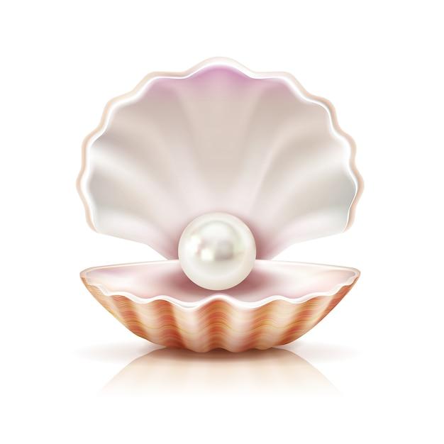 Madre perla brillando en cáscara abierta vector gratuito