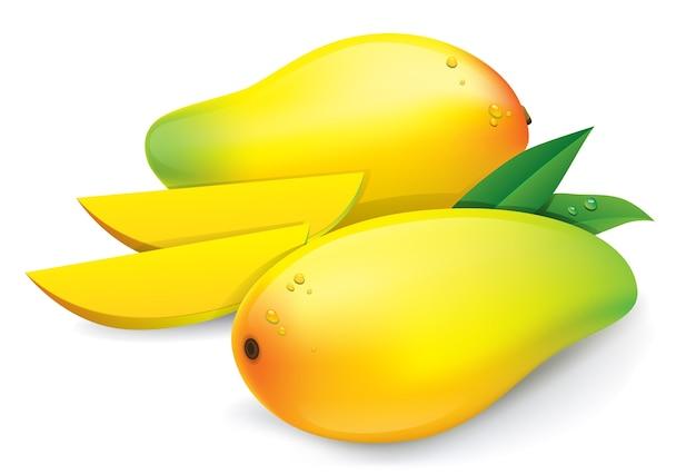 Mango amarillo aislado sobre fondo blanco Vector Premium