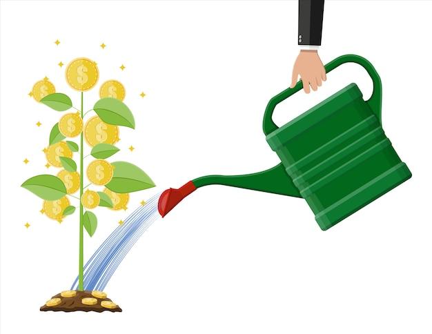Mano de empresario regando el árbol de monedas de dinero con lata Vector Premium
