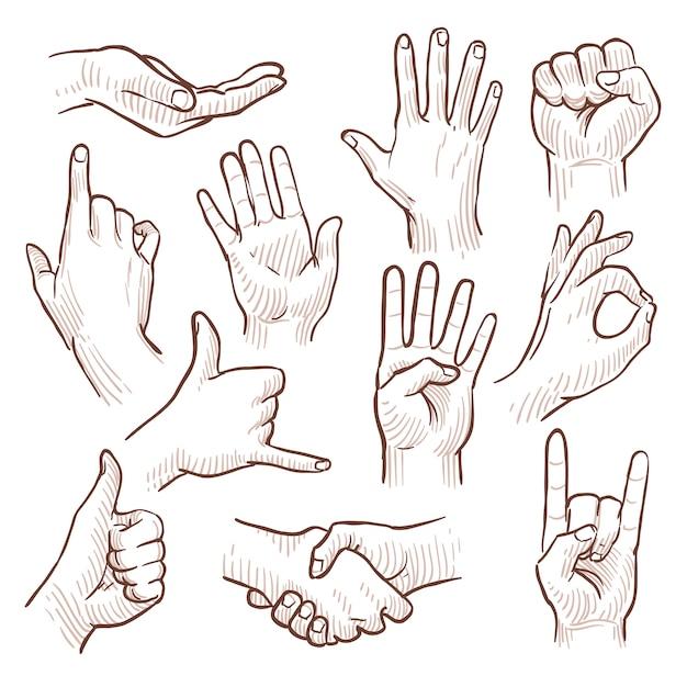 Las manos del garabato del dibujo lineal que muestran las muestras comunes vector la colección. gesto de la mano para la comunicación, ilustración de dibujar las manos Vector Premium