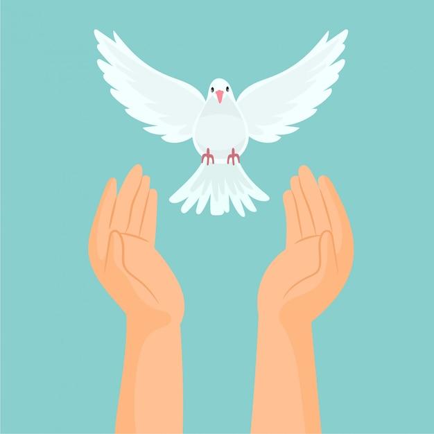Manos soltando una paloma blanca Vector Premium