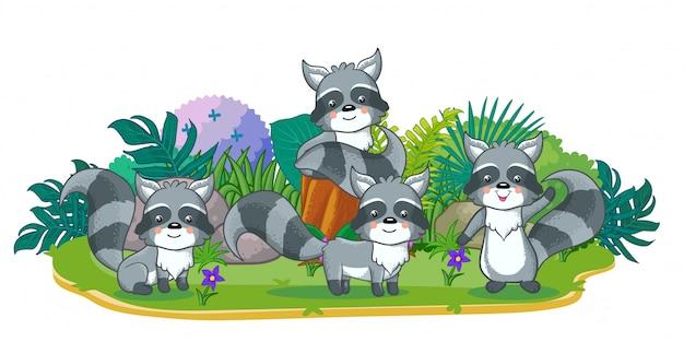 Los mapaches están jugando juntos en el jardín Vector Premium