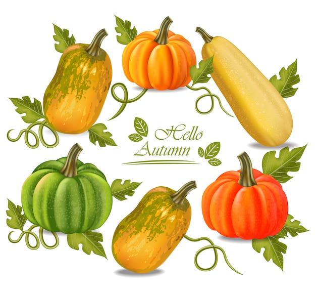 Marco de calabazas coloridas otoño Vector Premium