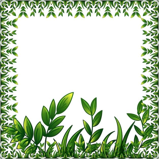 Marco de plantas verdes con adornos decorativos descargar vectores gratis - Marcos para plantas ...