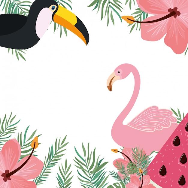 Marco de tucan y flamenco con flores de verano. vector gratuito