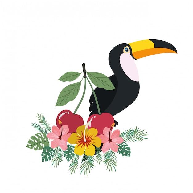 Marco de tucán y flor de verano. vector gratuito