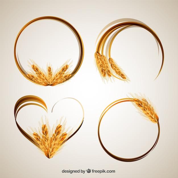 Marcos de espigas de trigo vector gratuito