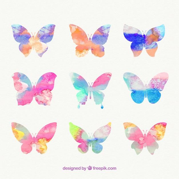 Mariposas Pintadas A Mano Descargar Vectores Premium
