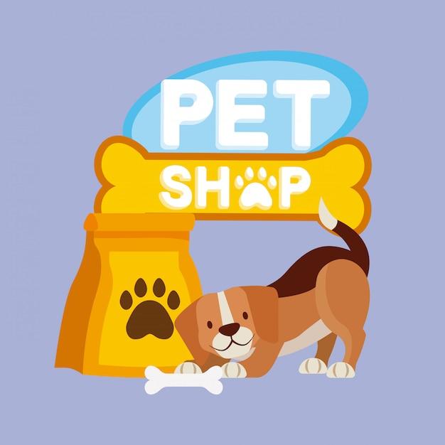 Mascota y veterinaria vector gratuito