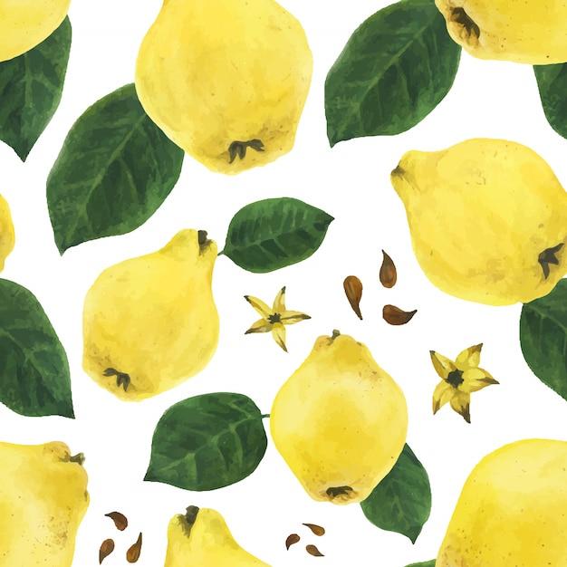 Membrillo frutas y hojas y semillas de patrones sin fisuras Vector Premium