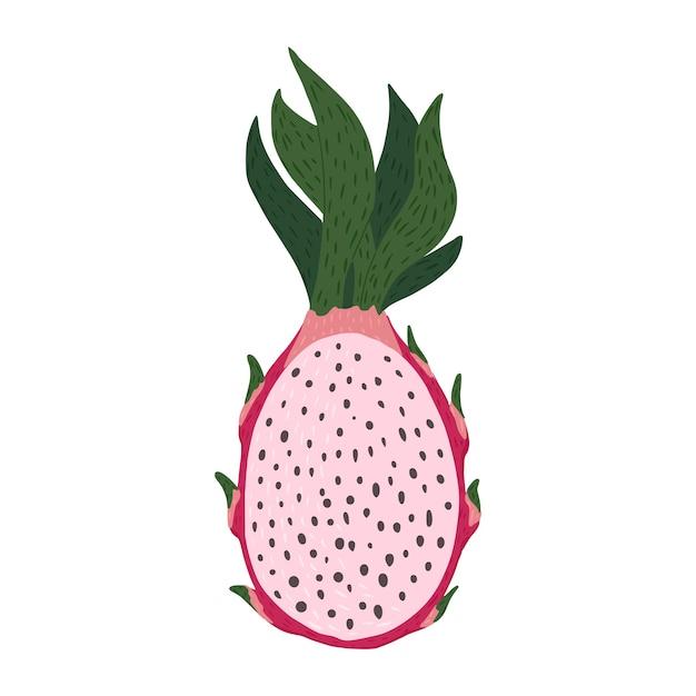 Mitad fruta del dragón aislada. color rosa de comida tropical en la ilustración de vector de estilo doodle. Vector Premium