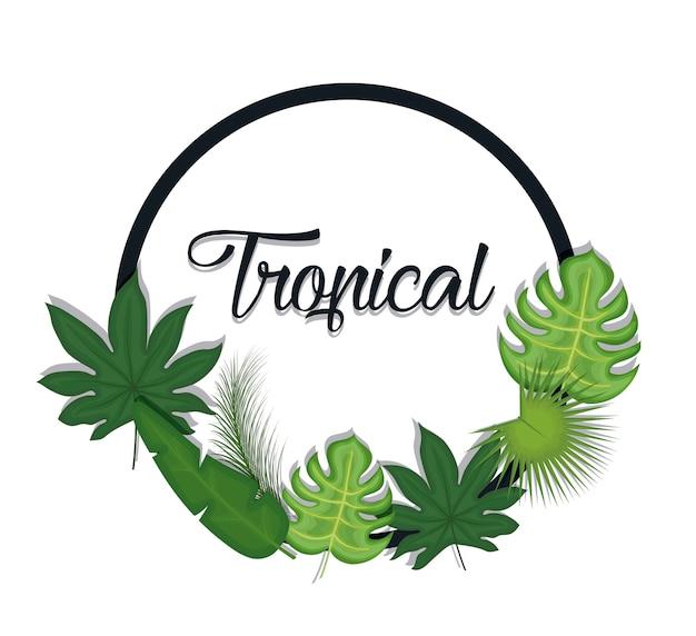 Moda verano tropical hojas banner | Descargar Vectores Premium
