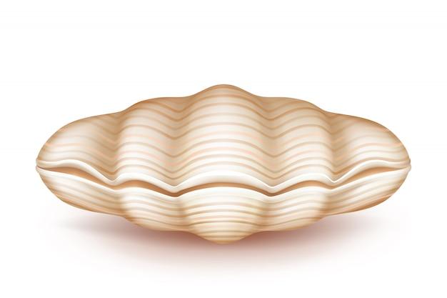 Mollusk cerrado seashell 3d icono realista vector gratuito