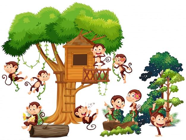 Monos jugando y trepando por la casa del árbol. vector gratuito