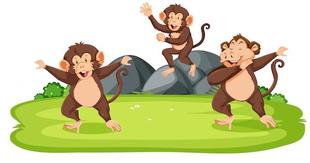 Monos en la naturaleza vector gratuito