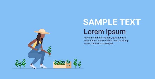 Mujer agricultor siembra agricultura plántulas mujer trabajador agrícola jardinería eco agricultura concepto integral horizontal Vector Premium