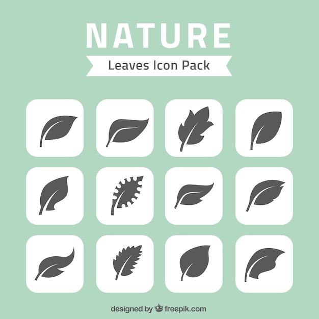 Naturaleza deja iconos paquete Vector Premium