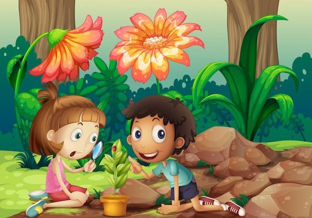 Una niña y un niño mirando la planta con una lupa. vector gratuito